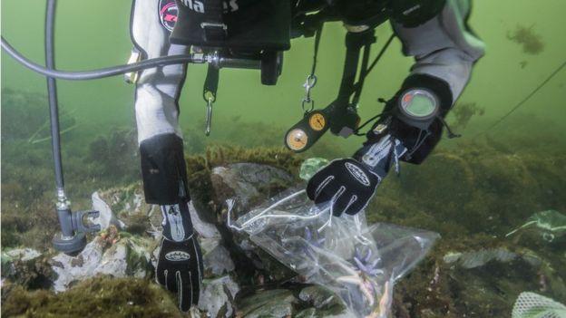 Pesquisadores do projeto UDEMM do Centro Helmholtz para Pesquisa Oceânica analisam impactos de substâncias tóxicas liberadas por munições da Segunda Guerra no Báltico - JANA ULRICH/DIVULGAÇÃO