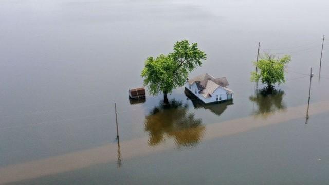 A natureza não é custeada na tomada de decisões econômicas, diz o relatório. Fonte: GETTY IMAGES.