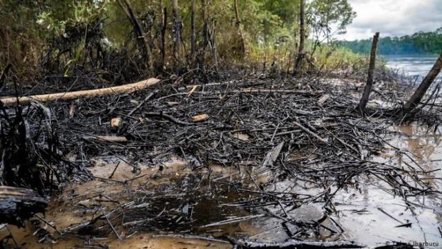 Petróleo que vazou de oleodutos na Amazônia equatoriana
