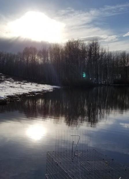 Amanhecer em área de pesquisa de Casey Setash, no norte do Colorado. Casey Setash, CC BY-ND.