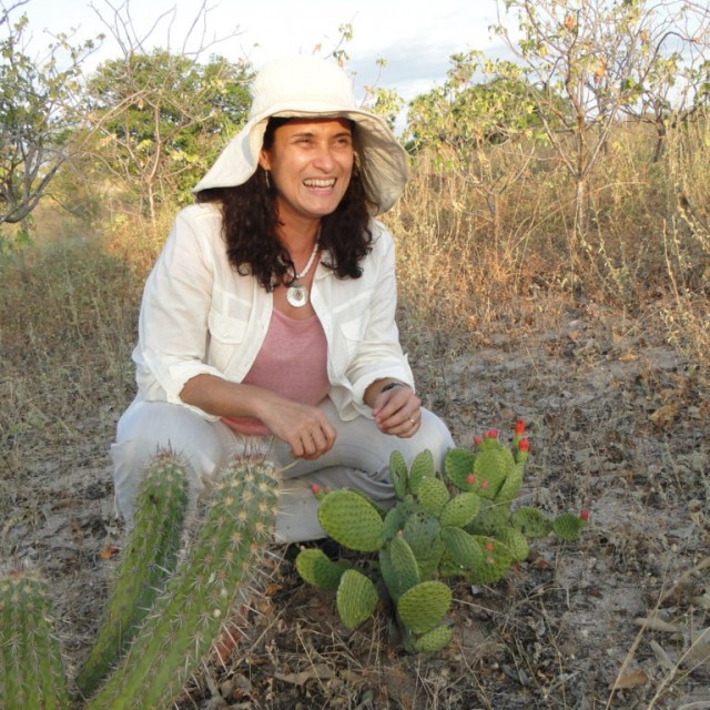 Gislene Ganade na área do experimento. Foto: Gustavo Paterno.