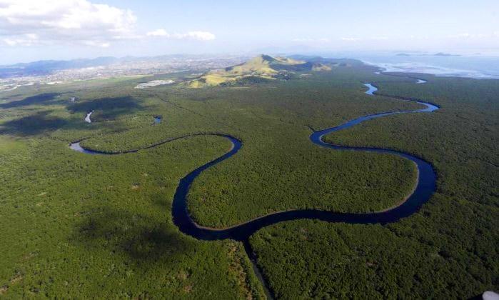 Vista aérea da APA Guapimirim, Baia da Guanabara,RJ (foto Custodio Coimbra)