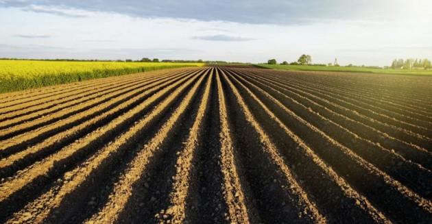 Agricultura conservacionista