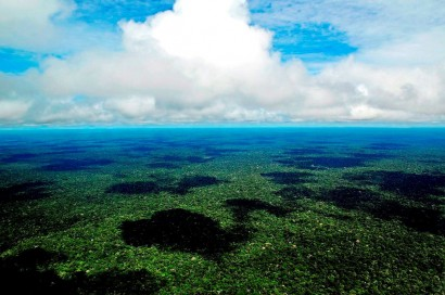 Amazônia (imagem da internet)