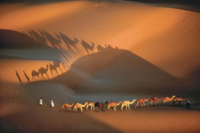 caravana-de-dromedarios-perto-de-nouakchott-mauritania