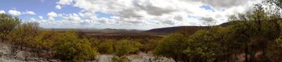 habitat original da Ararinha: o sertão baiano