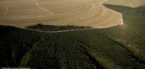 Desmatamento-no-Cerrado-foto-do-Greenpeace