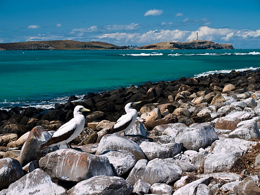 Parque Abrolhos (CharlesYoung)