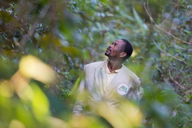 O guarda-florestal Monja Randriamonja patrulha a floresta de Tsitongambaraika, em Madagascar, protegendo a natureza da exploração madeireira ilegal. Foto: ONU Meio Ambiente