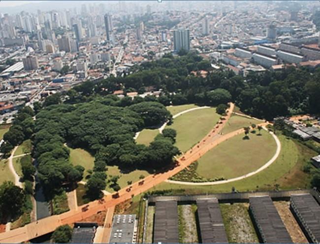 Pequena reserva de Mata Atlântica no Parque da Juventude, ZN de São Paulo (antiga Casa de Detenção)
