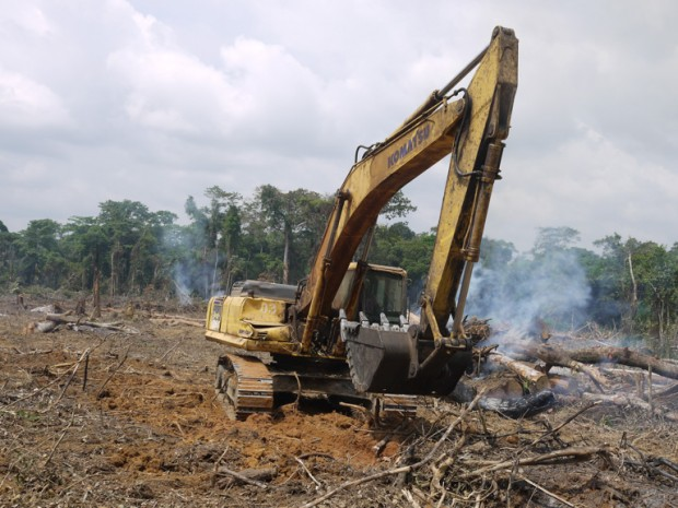 Destruição de floresta para construção de estrada na República do Congo. Foto: William Laurance.