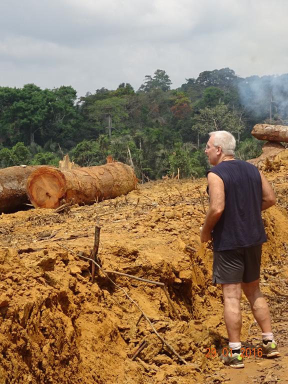 O ecologista tropical William Laurance avalia um projeto chinês de construção de estrada na República do Congo. Foto: Mahmoud Mahmoud.