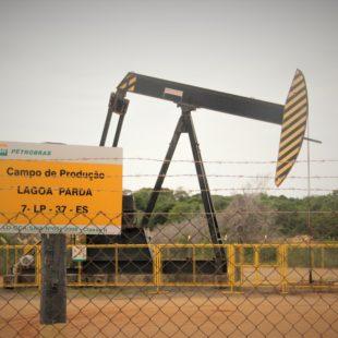 Cavalinho de petróleo. (Foto: Flavia Bernardes / FASE ES)