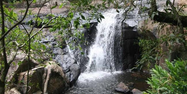 Serra-do-japi