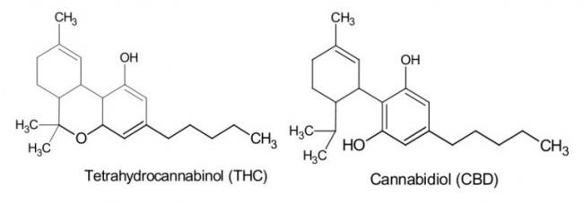 Estrutura do THC e do CBD. (Créditos da imagem: Green Relief).