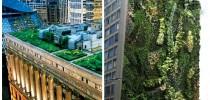 Telhados-Verdes-e-jardins-verticais-624x468