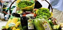 alimentos_orgânicos_korin[1]