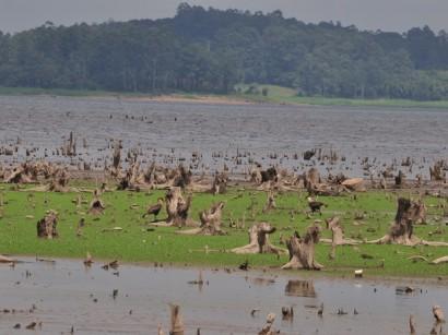 Sinais da seca que atinge o Sistema Alto Tietê.
