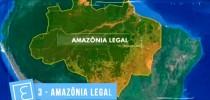 amazonalegal