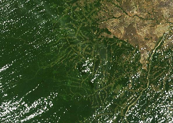 amazonia-desmatamentorr