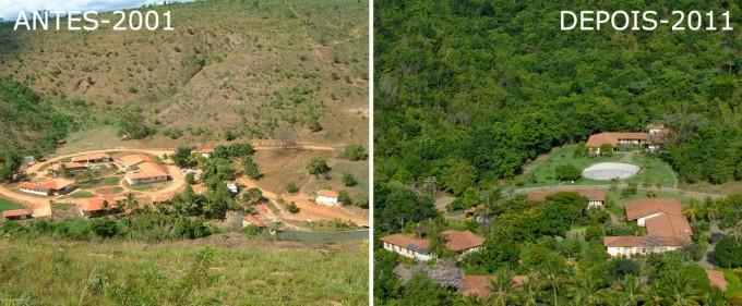 O antes e o depois da fazenda de Sebastião Salgado em Aimorés, MG