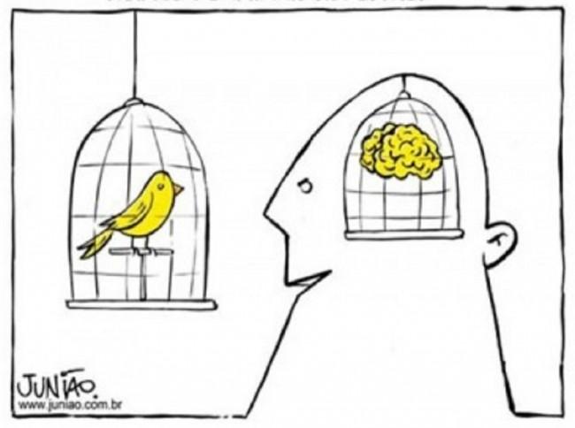 aprisionar-animais