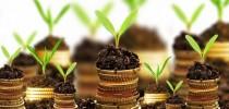 Dinheiro deve ser investido em bases sustentáveis