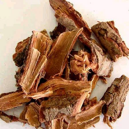 Casca de barbatimão, árvore tipica do cerrado brasileiro, é altamente cicatrizante