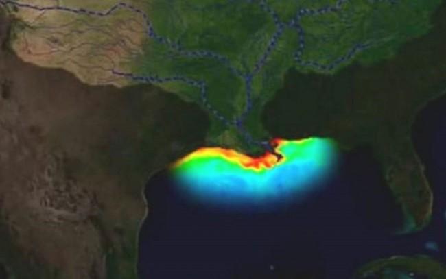 Golfo do México é cercado pelas costas de Cuba, Estados Unidos e México. A 'zona morta' fica na foz do rio Mississipi, perto de Nova Orleans (Foto: Lumcon)