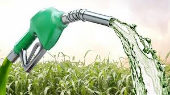 biocombustiveis_620_