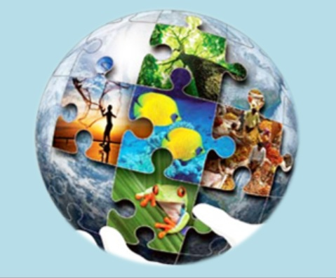 biodiversidade2