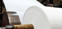 biotecnologia-na-industria-de-papel-e-celulose