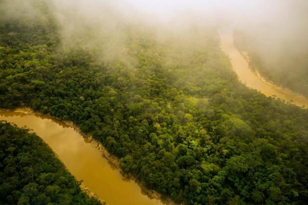A floresta tropical da Amazônia, mostrada na foto, é mais do que se pode ver, diz o novo livro The Third Bank of the River. (Foto de Redmond Durrell, Alamy Stock Photo)