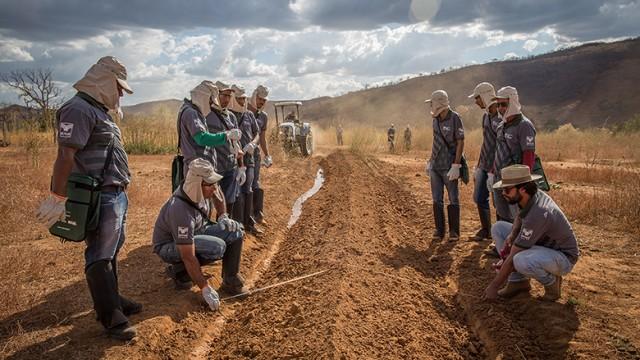 Agricultores da Bahia recebem treinamento em preparação do solo. Foto: Illuminati Filmes