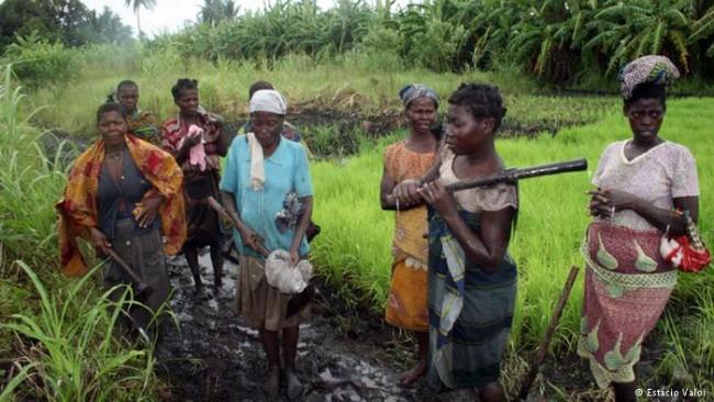 camponesesdemoçambique