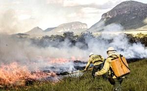 A queima controlada precede em seis meses a semeadura no Parque Nacional da Chapada dos Veadeiros (Fernando Tatagiba)