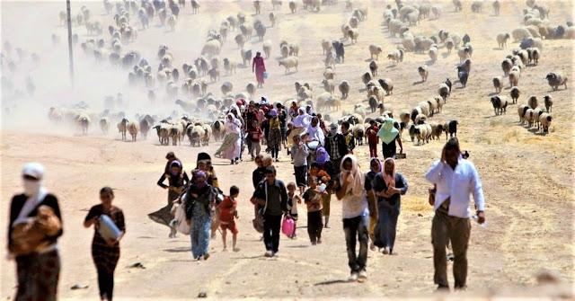 refugiados Yazidi (foto: Reuters/Rodi Said)