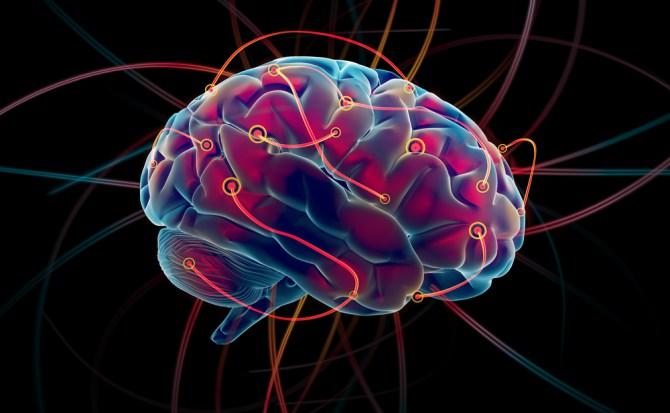 conectoma-cerebro