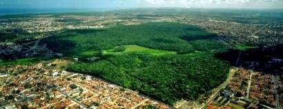 Mata do Buraquinho, região metropolitana de João Pessoa, PB