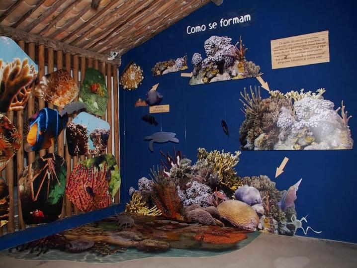 Nova expsição permanete e gratuita Projeto Coral Vivo.