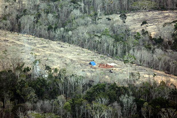 Área de mata atlântica desmatada em Santa Cruz Cabrália-BA