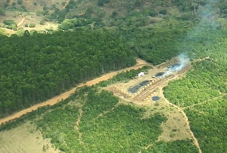 Desmatamento em Minas Gerais
