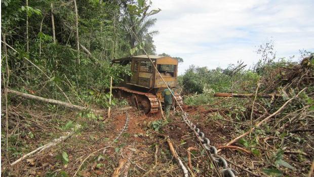 A rapidez da devastação do Cerrado, em que uma corrente remove alqueires de vegetação em poucos dias (no alto), vai levando à morte por desidratação dos antes grandiosos rios goianos, como o Meia Ponte (acima)   Divulgação