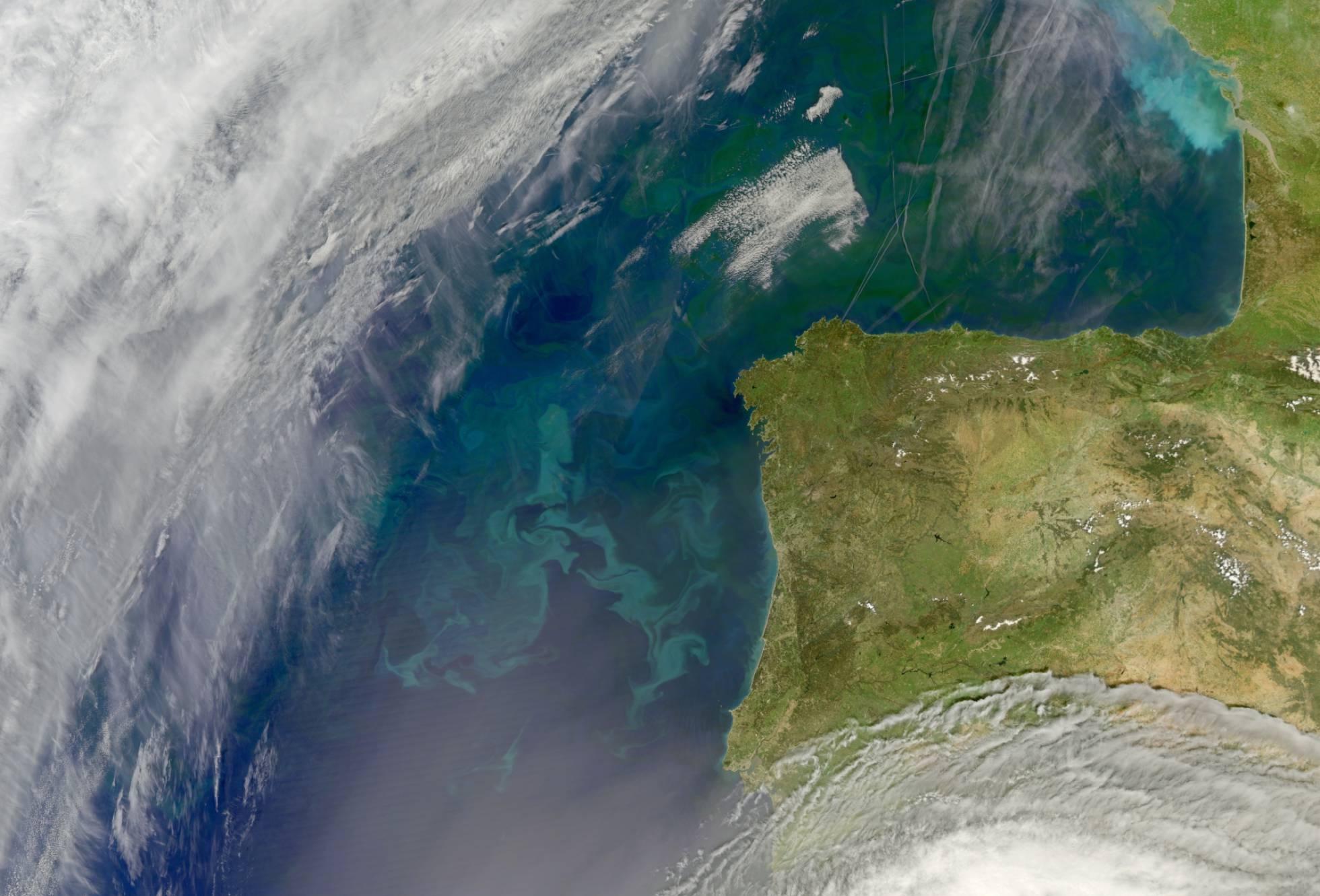Aglomeração de fitoplâncton na costa da Península Ibérica e, ao norte, no golfo de Biscaia. NASA.GOV