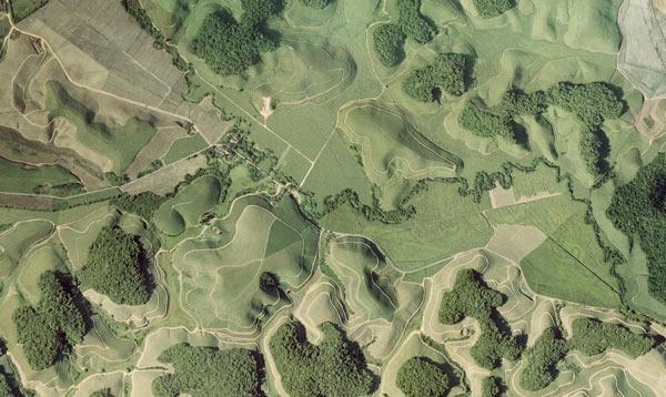 fragmentação-florestal