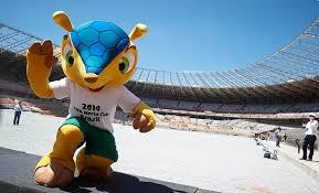 Fuleco, o mascote da Copa 2014.