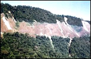 Erro idêntico cometido pela engenharia brasileira no trecho Serra do Mar da Estrada de Ferro Sorocabana. Notar os inúmeros deslizaamentos associados a esse desmatamento.