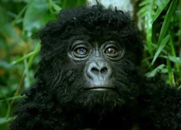 bebê gorila robô
