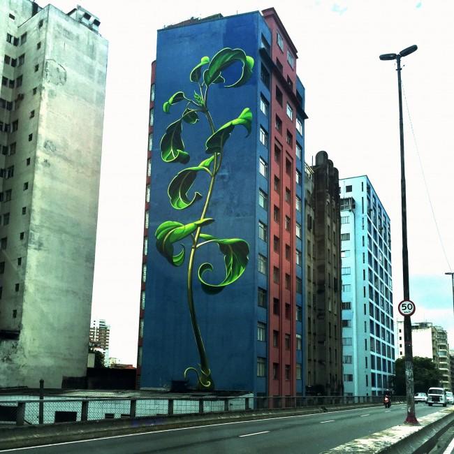 grafiteminhocaoDD