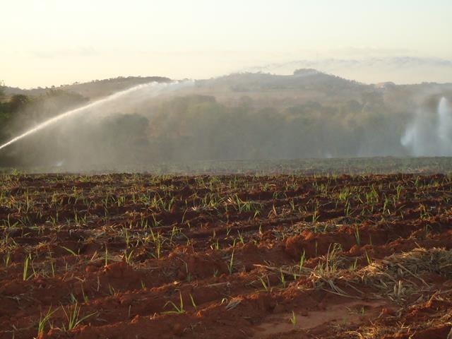 Irrigação em Carmo do Rio Verde (imagem Valle Noticias)